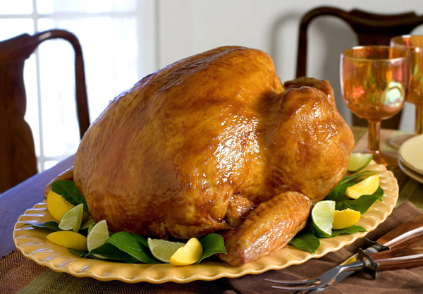 Butterball Oil Less Turkey Fryer FAQs